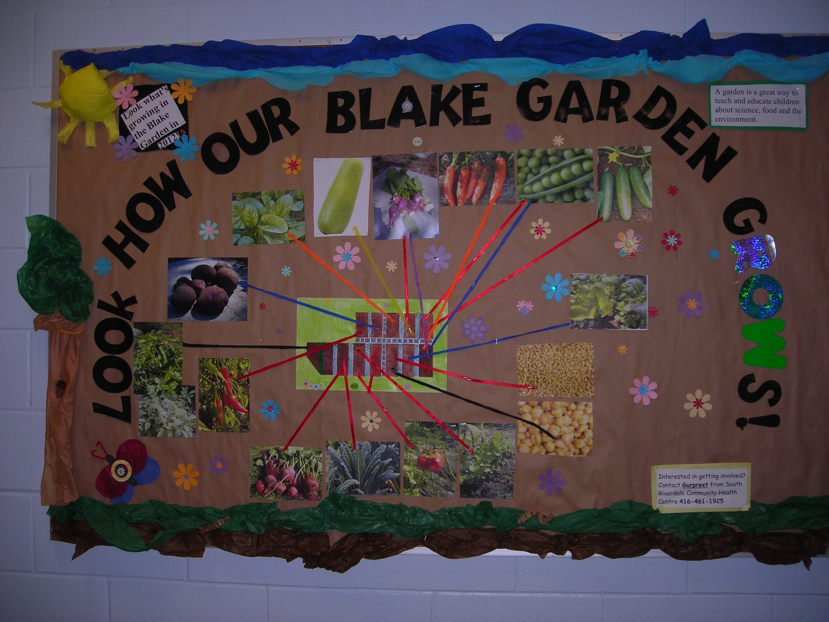 Go green vegetable bulletin board idea myclassroomideas com - Garden Bulletin Boards