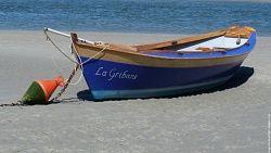 lagribane