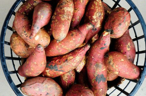 Sweet potatoes may just be your cold-weather fat-burning secret. Sweet potatoes are a great source of fiber, which helps keep you feeling full while burning calories by putting your digestive system to work. And they also contain a hormone that helps regulate your blood sugar. Stick with simply seasoned boiled or steamed sweet potatoes — not a sugary dessert — if you are eating for weight loss. Source: Thinkstock