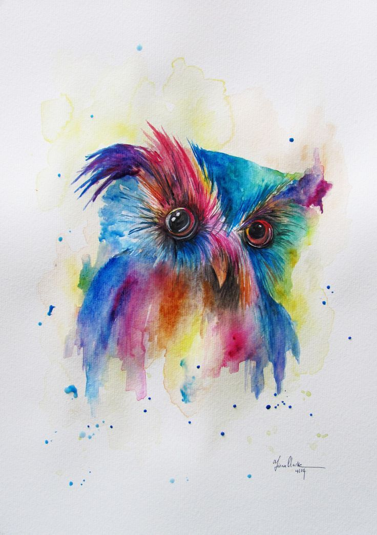 Colorful Watercolor Paintings Cute Colourful Owl Watercolor