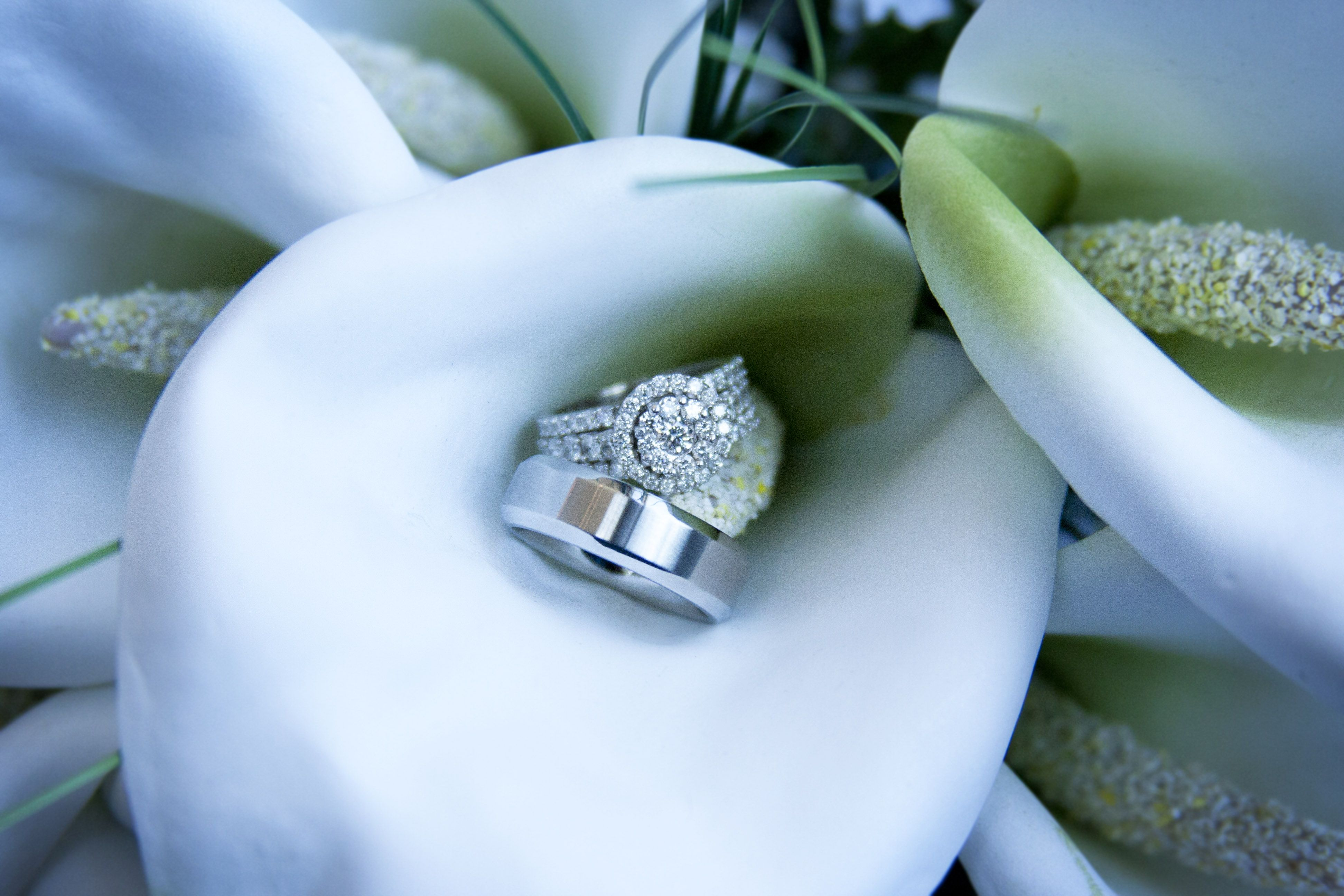 Pin by Jessica on Photography Wedding rings, Engagement