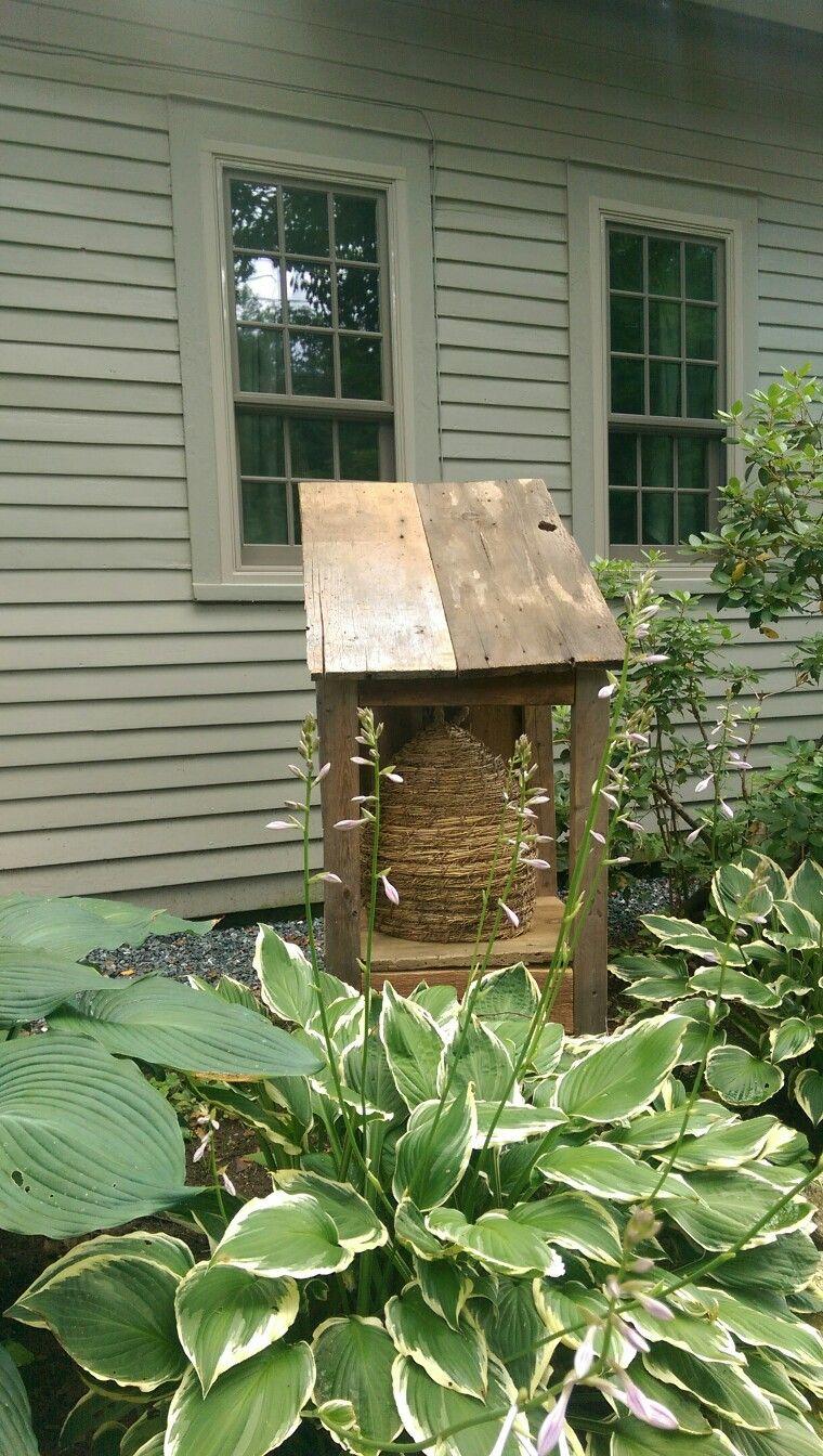 Veggie garden inspiration  Pin by Tammy Olsen on GardenYard  Pinterest  Bees Gardens and