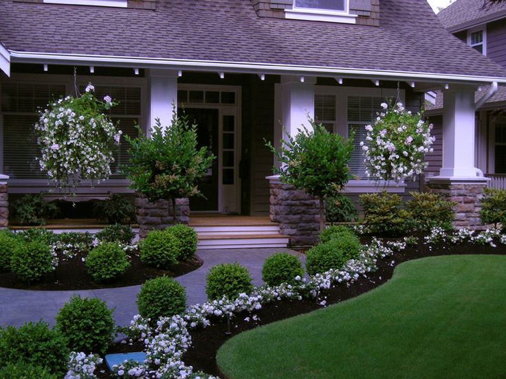 beautiful front yard borders