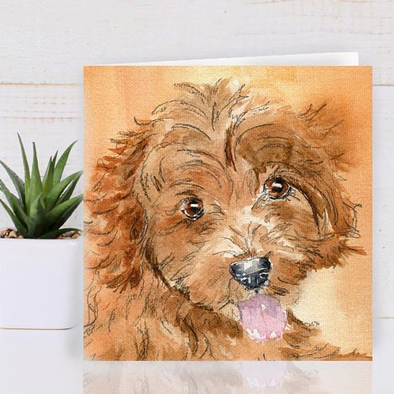 Cavapoo Greeting Cards Https Www Etsy Com Uk Listing 546207592 Best Friend Dog Lovers Card Dog Dog Lover Gifts