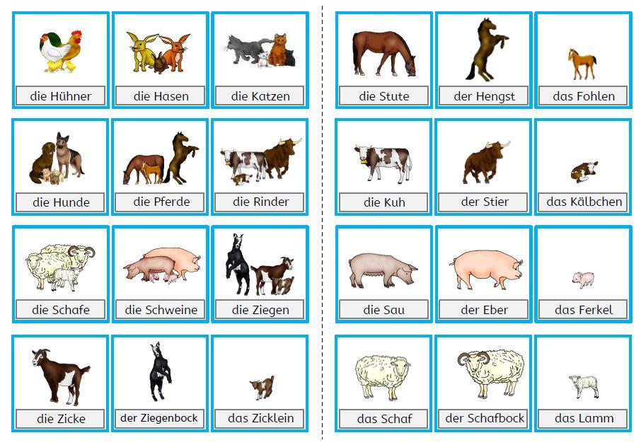Blog Mit Selbst Erstellten Unterrichtsmaterialien Fur Die Grundschule X2f Volksschule Zum Download Mathematik D Bauernhof Tiere Bauernhof Thema Bauernhof