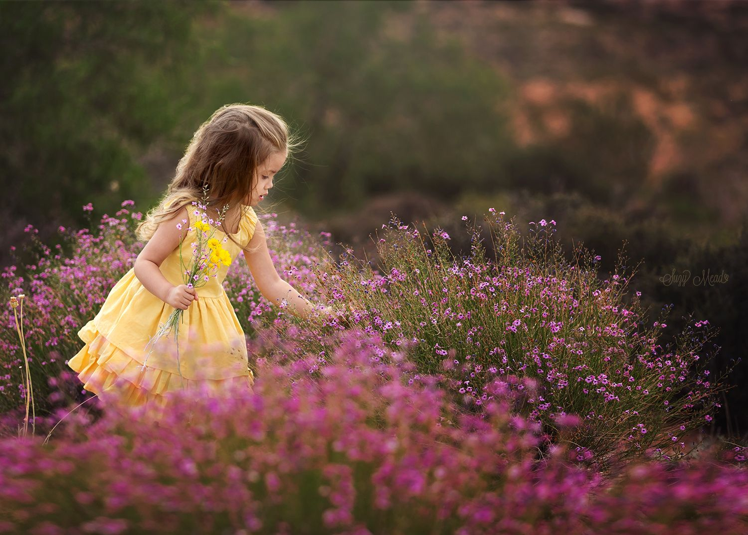 321 best photography images on pinterest photography beautiful