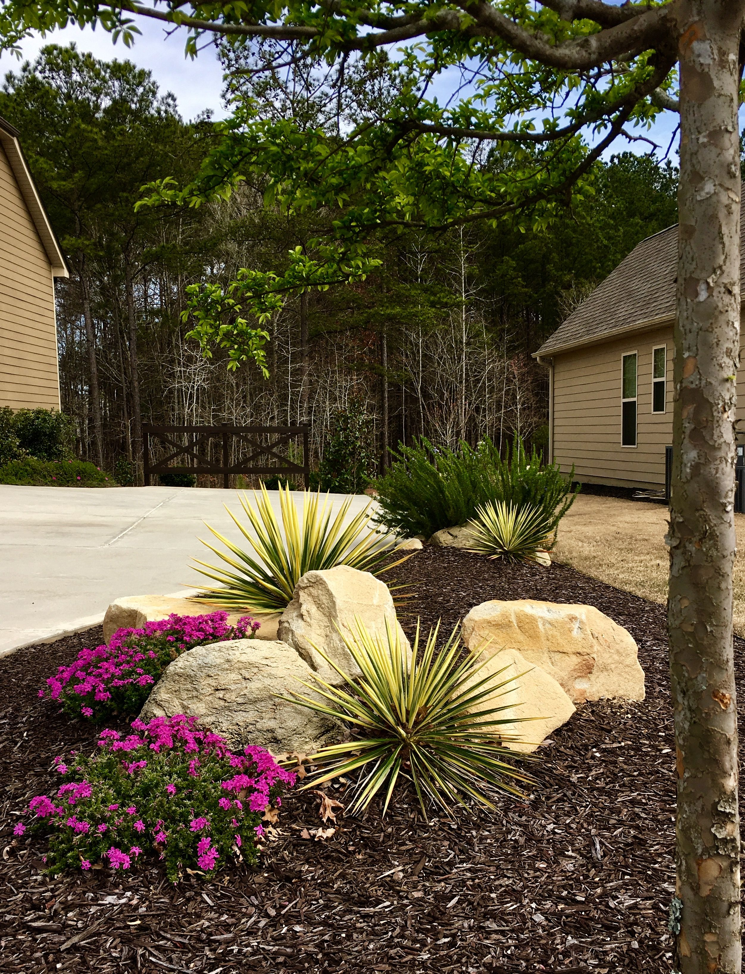 Landscaping with rocks boulders phlox and rosemary