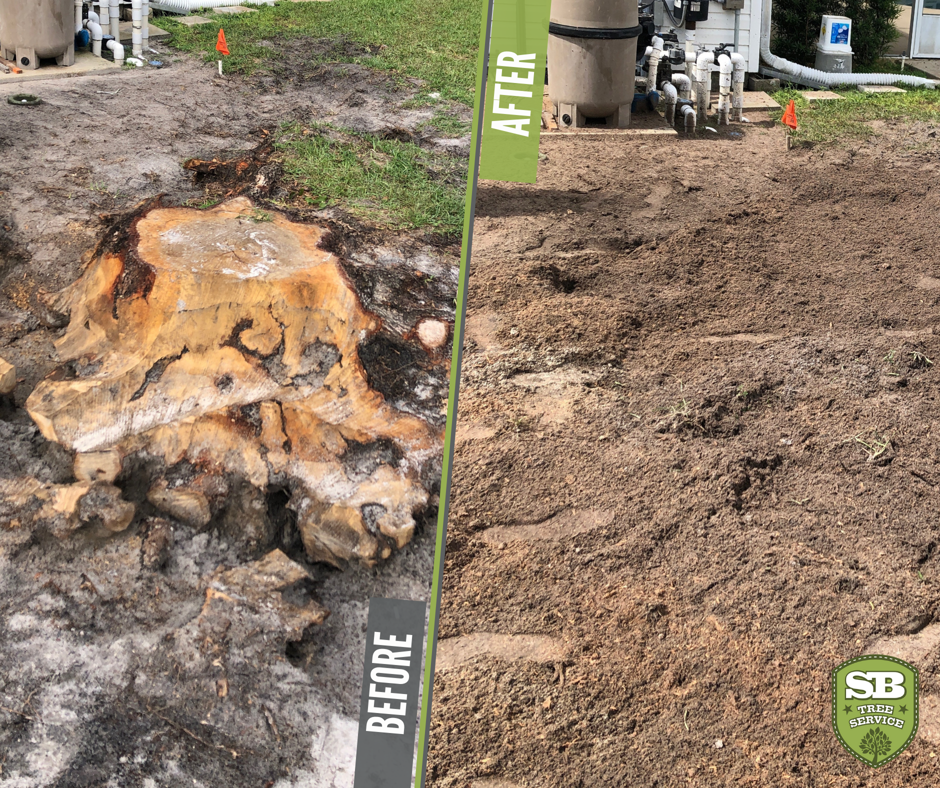 50+ What to do with stump grinding debris information