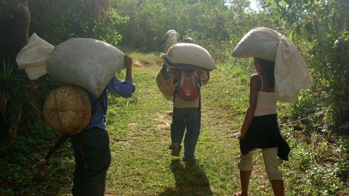 Fairtrade Coffee growers in Tacuba in the Parque Nacional El Imposible, El Salvador (flickr: alphatangobravo)