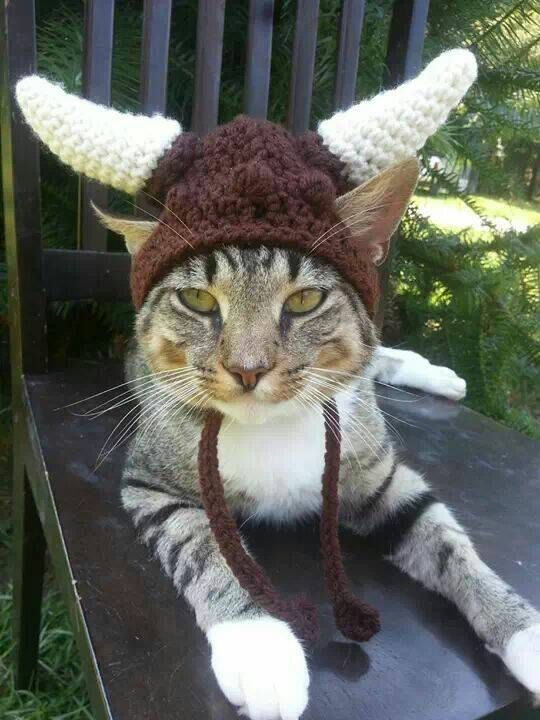 Viking Hat for Cats, Viking Cat Hat, Viking Cat Hats, Cat Clothes ...