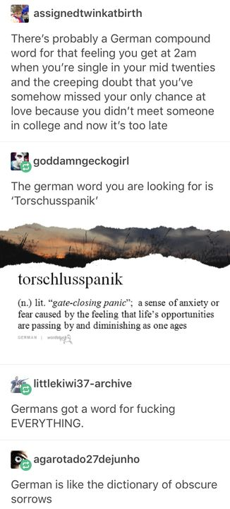 There S Literally A German Word For Everything Tumblr Funny