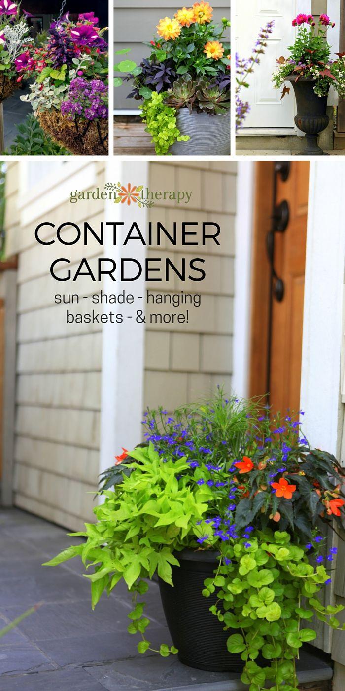 Container garden inspiration gallery for sun shade