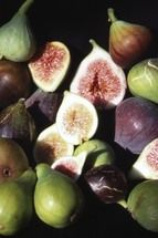 Fig trees and many others. delivery to Ire €50