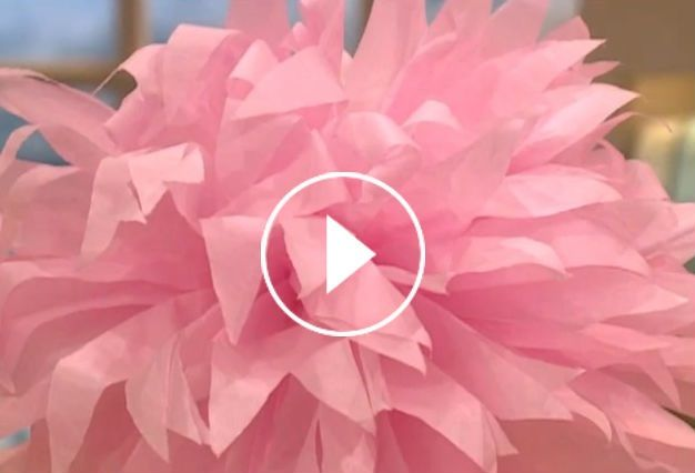 Diy paper flower video mostly i like this video for how awkward diy paper flower video mostly i like this video for how awkward martha stewart is interacting with the craft lady hilarious mightylinksfo