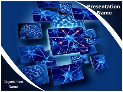 Neuron Function Powerpoint Presentation Template Is One Of The