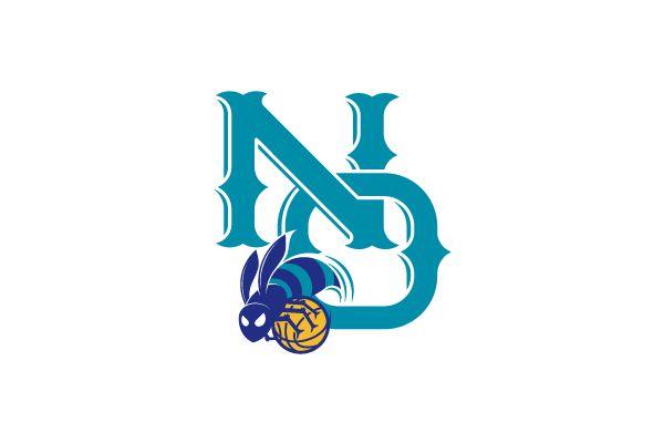 New Orleans Hornets Sports Logo Team Logo Nba