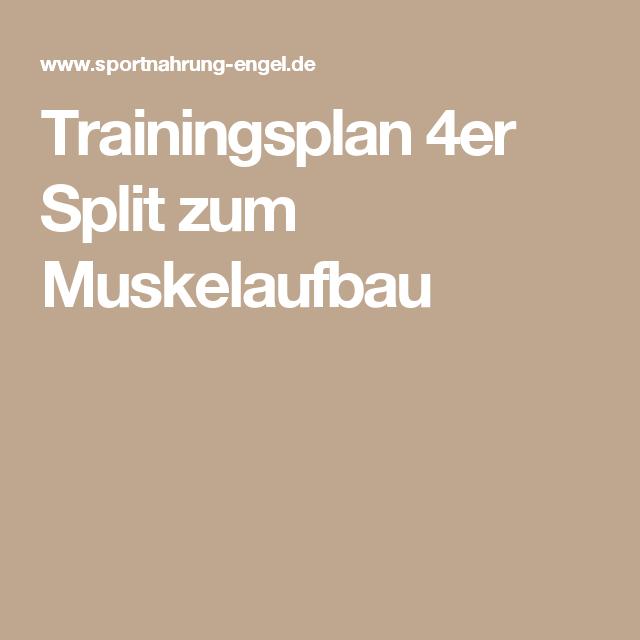 Trainingsplan 4er Split Zum Muskelaufbau Workouts