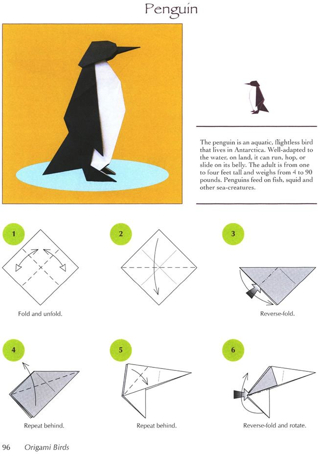 Origami Penguin Page 1 Dover Publications