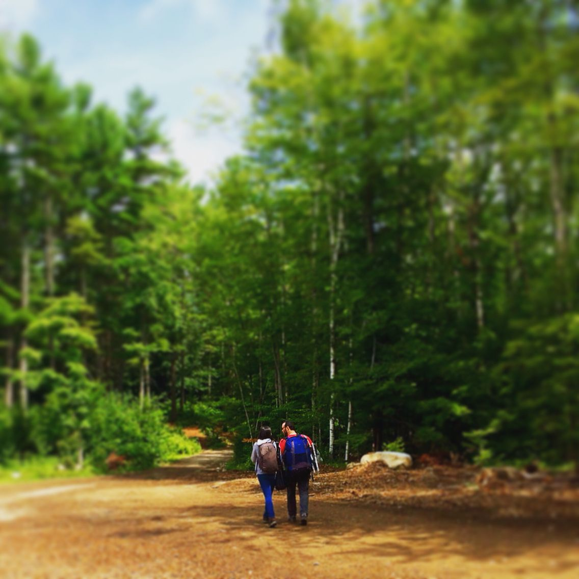 Posh Primitive Luxury Camping   Adirondack Glamping   Luxury