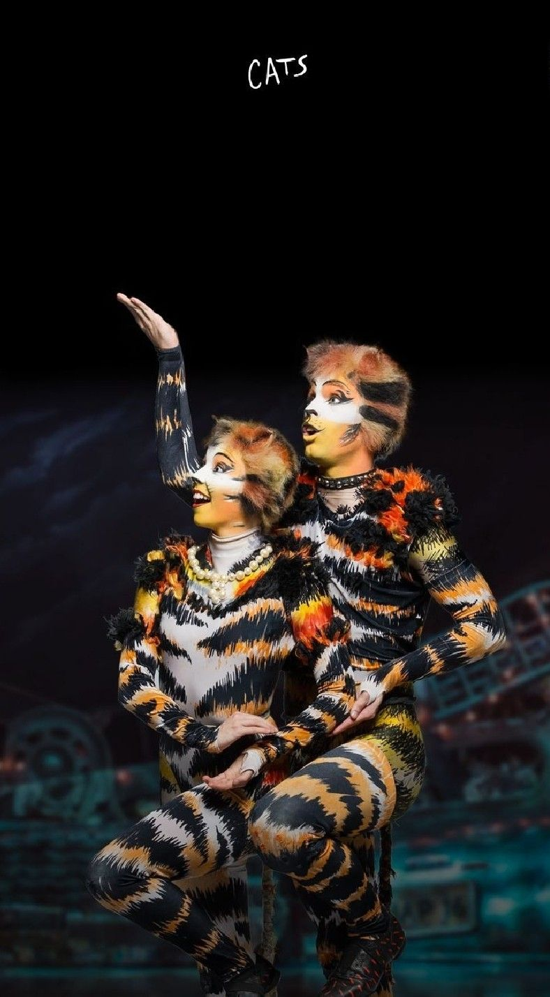 Pin by Lawrie Warner on Jellicle Cats Come Out Tonight in