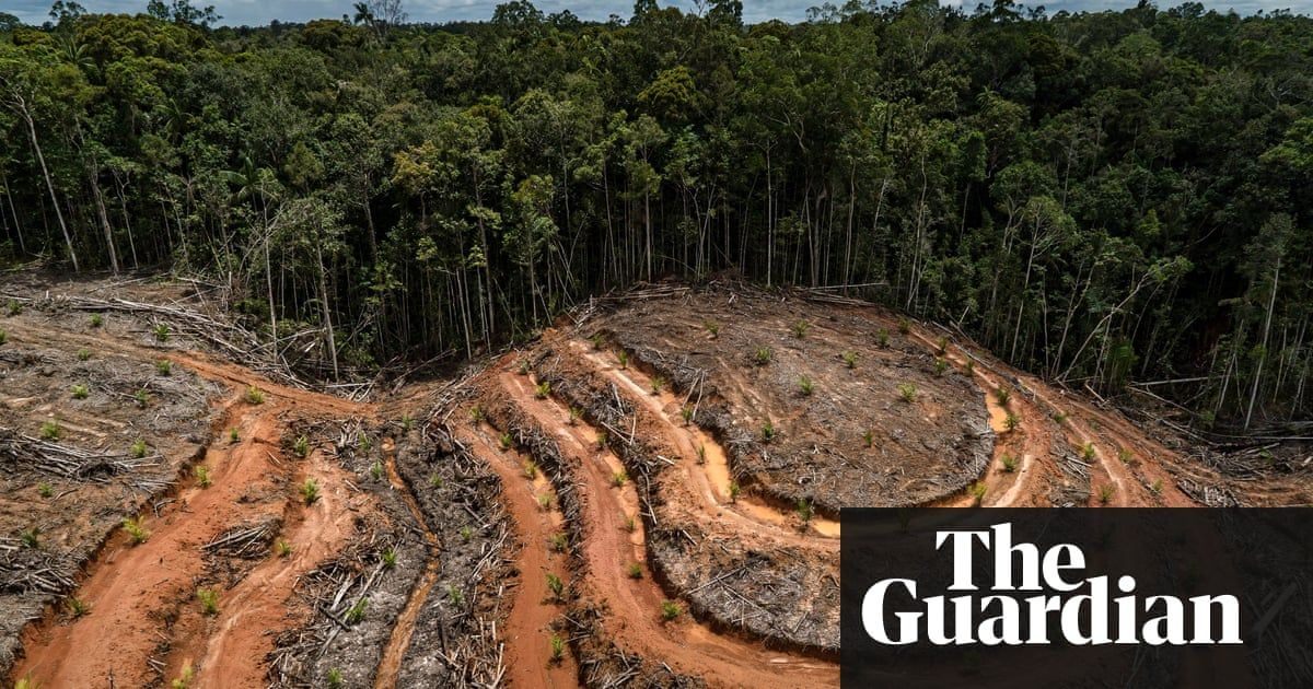 Stop Biodiversity Loss Or We Could Face Our Own Extinction Warns