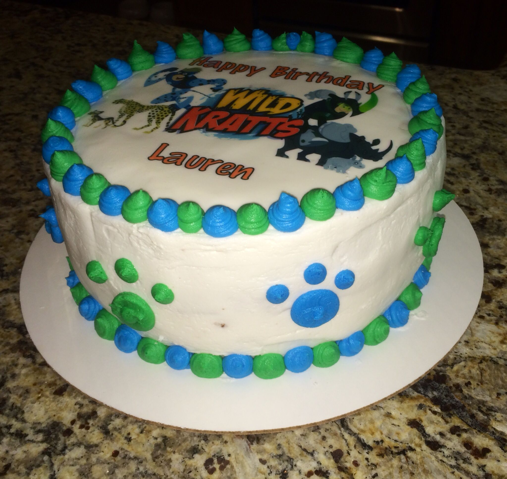 Wild Kratts Birthday Cake Side View With Creature Power Birthday