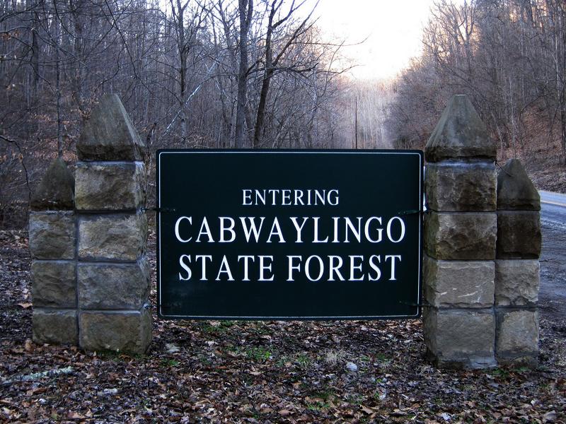 Cabwaylingo Bridge Ghost State Forest West Virginia Ghost