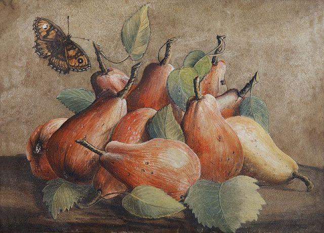 Natura morta con pere e una farfalla Giovanna Garzoni 1600 .