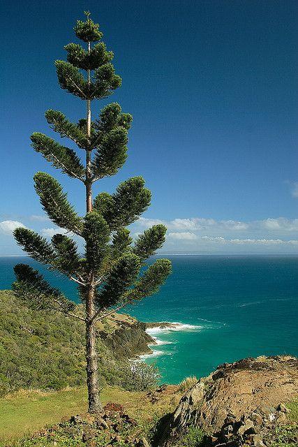 ✯ Rainbow Beach - The Gateway to Fraser Island - Australia