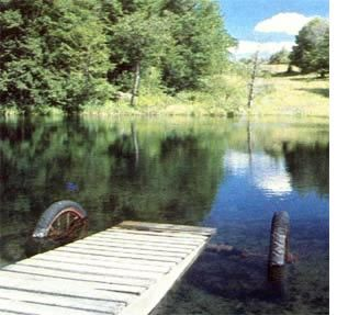A do it yourself rolling dock diy pond lake life and dock ideas a do it yourself rolling dock diy mother earth news solutioingenieria Choice Image