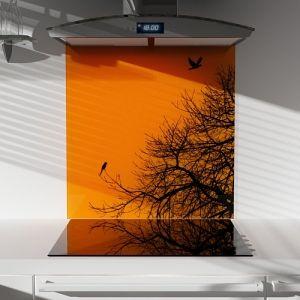 Dandelion Printed Glass Splashback 900mm Width x 750mm Height