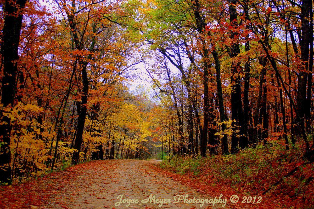 Dutton S Cave West Union By Joyce Meyer Fall In Iowa West Union Fall Colors Iowa