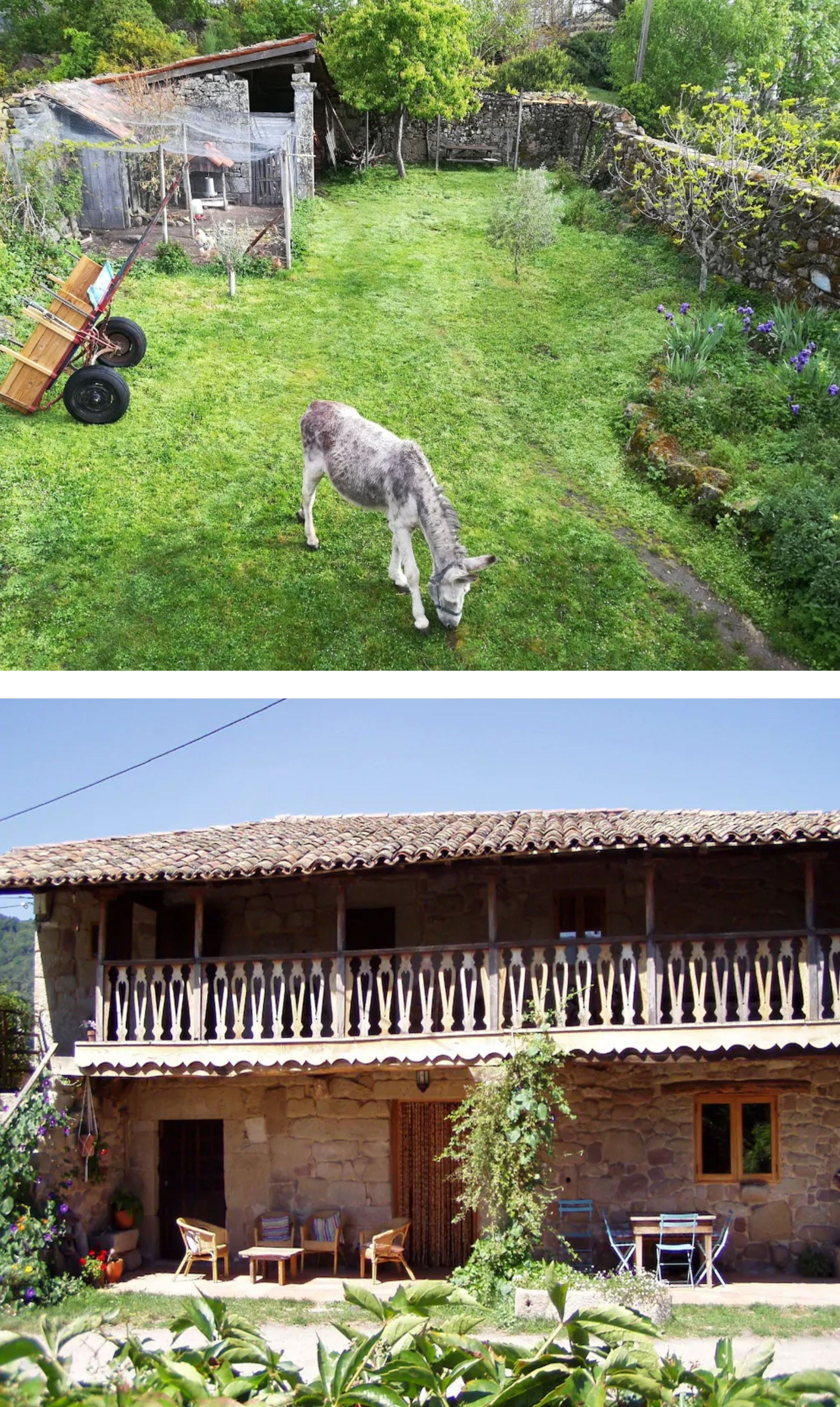 Ourense Casa Con Animales De Granja En La Ribeira Sacra O Cañones Del Sil Termas Al Aire Libre Casas Rurales Rurales Aire Libre