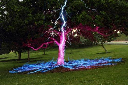 Foto de longa exposição de um raio sobre uma árvore.
