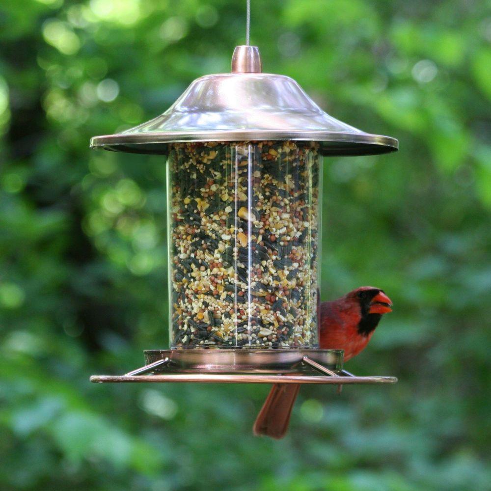 Hanging Bird Seed Feeder Squirrel Proof Metal Outdoor Garden Wild Pet Birdfeeder…