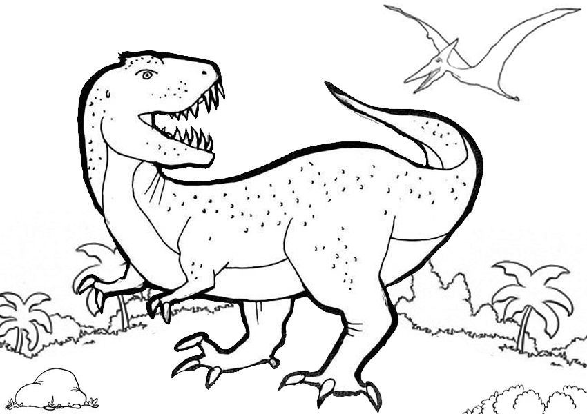Trex Coloring Pages Dinosaur Coloring Pages Animal Coloring
