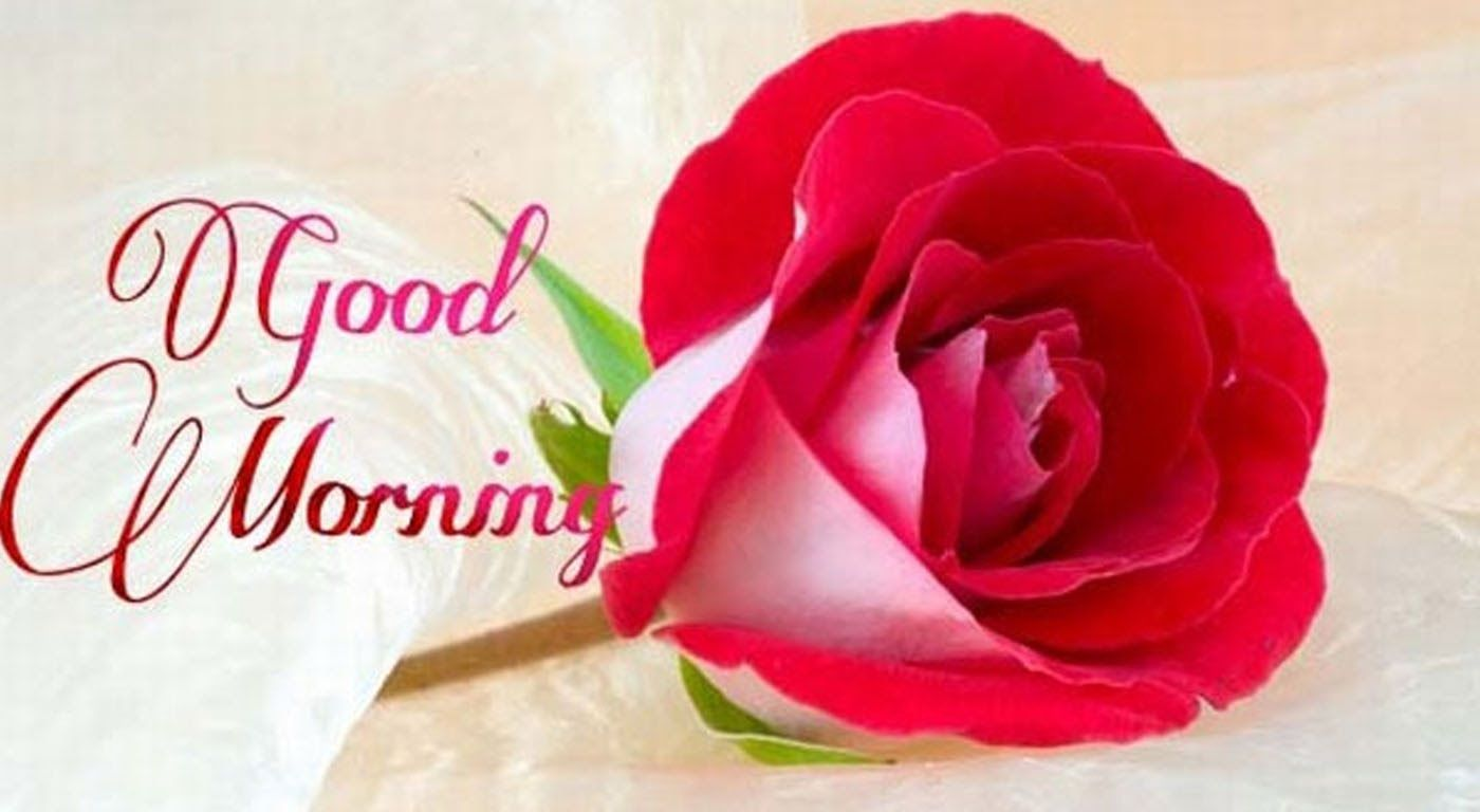 Latest Good Morning Wishes Sms Greetings Whatsapp Video Message