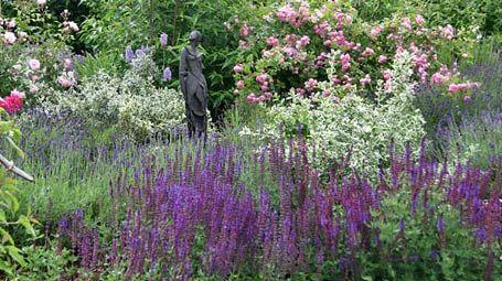 Elegant Immerbl hendes Beet Mein sch ner Garten