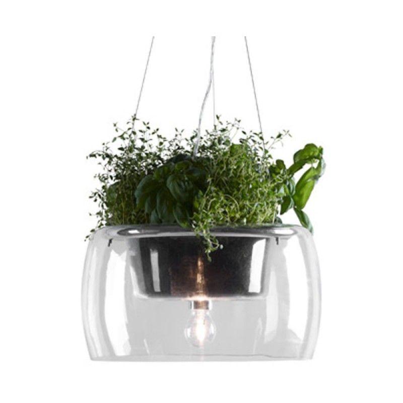 lampa med växter