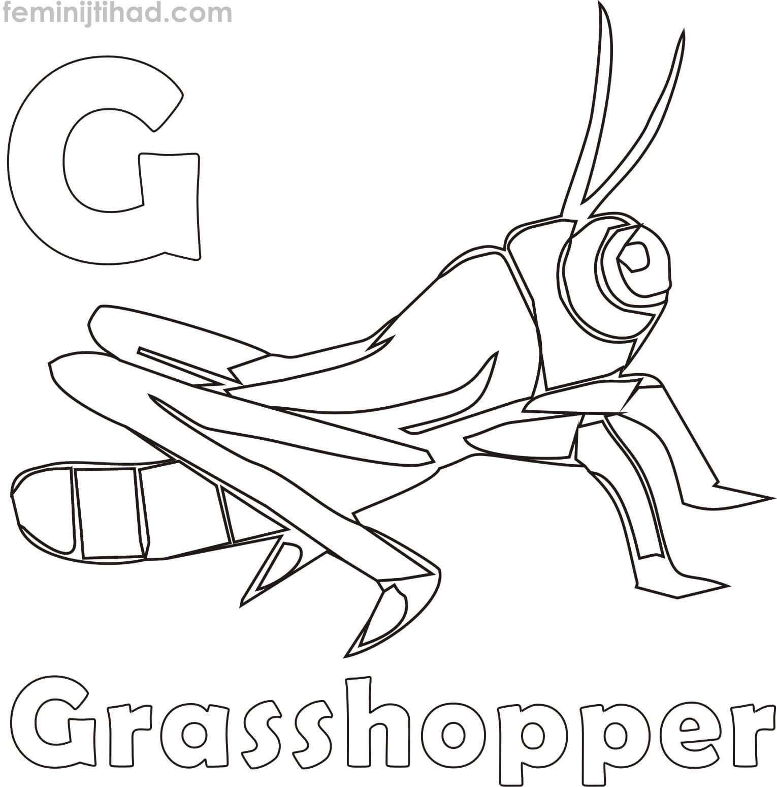 G For Grasshopper Coloring Pages For Kids | Animal ...