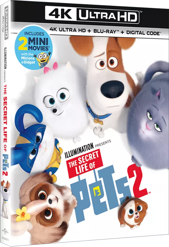 The Secret Life Of Pets 2 Barks Onto 4k Ultra Hd Blu Ray Dvd On Demand August 27 Secret Life Of Pets Secret Life Pets