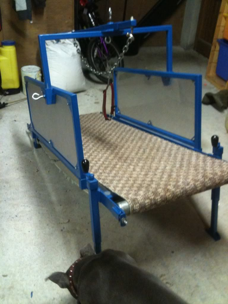 Carpet Mill Big Rollers Or Small Dog Games Dog Treadmill Dog Conditioner