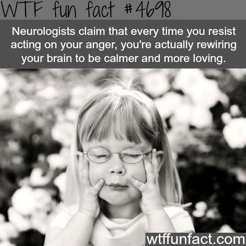 Quotes About Anger And Rage: Why You Should Resist Your Acting On Your Anger
