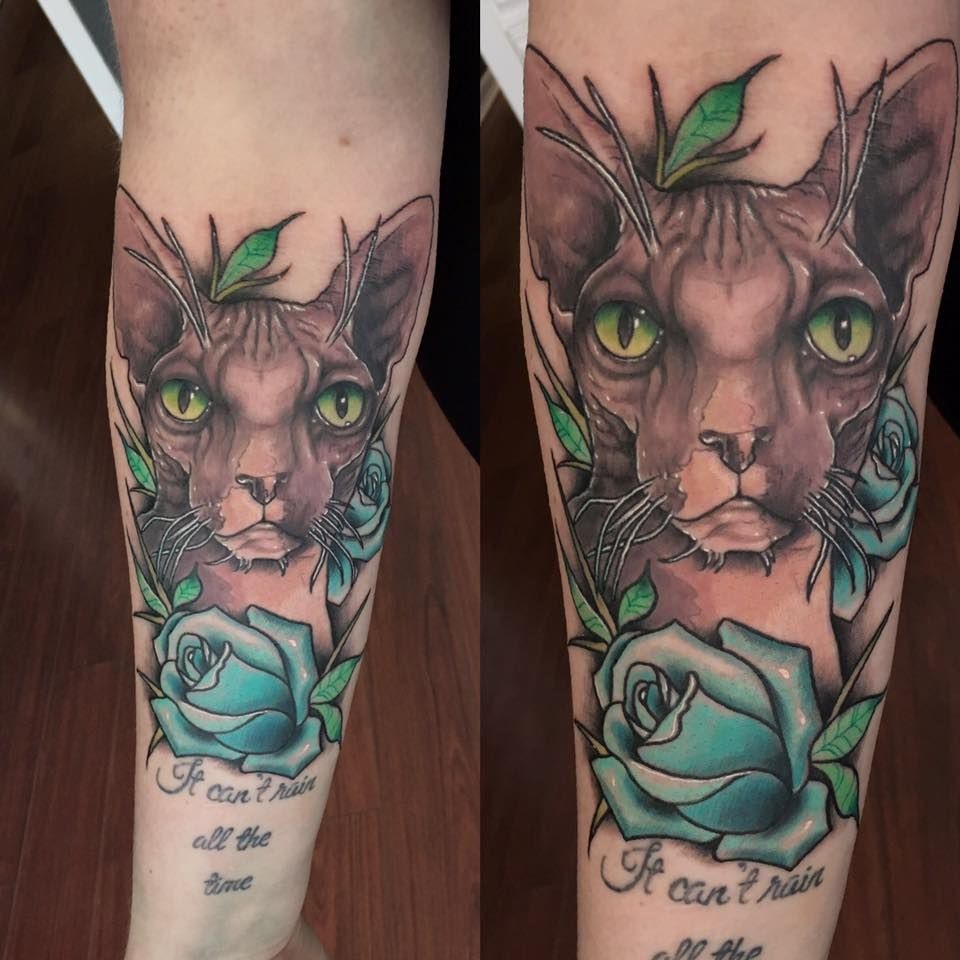 Neo Traditional Sphynx Cat portrait by Michael Clester