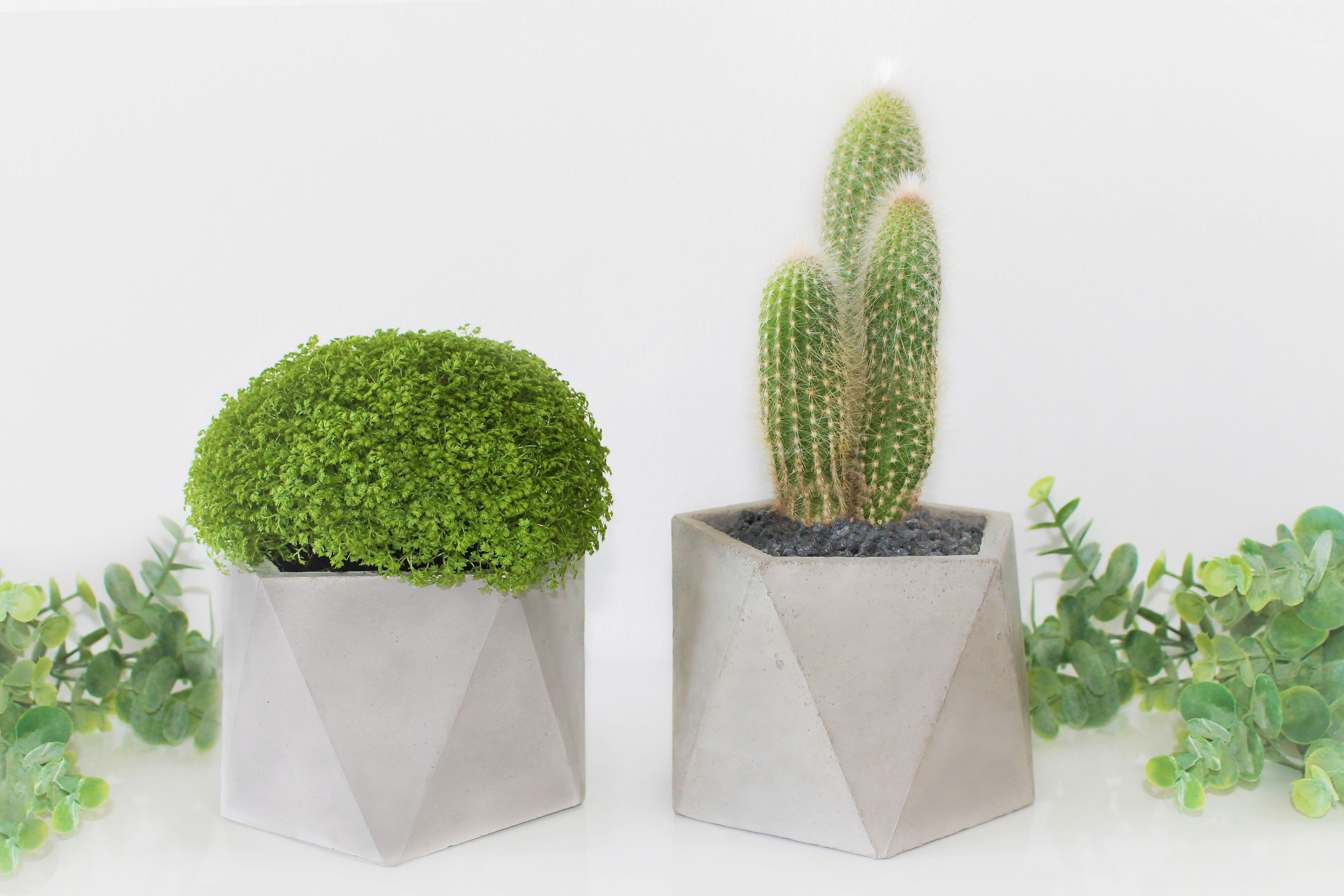 Concrete planter by Edgy + Rocks | Penta Pot | Pinterest ...
