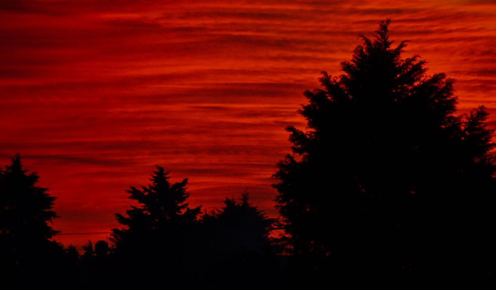 Del compositor Juan Záizar, Cielo Rojo es una de las canciones más representativas de la música folclórica mexicana, interpretada por un sinnúmero de voces de diversos géneros, la pieza musical ha transcendido de generación en generación, el falsete de Miguel Aceves Mejía, la cadencia y seducción de Lucía Méndez o la popularidad de las voces Read More