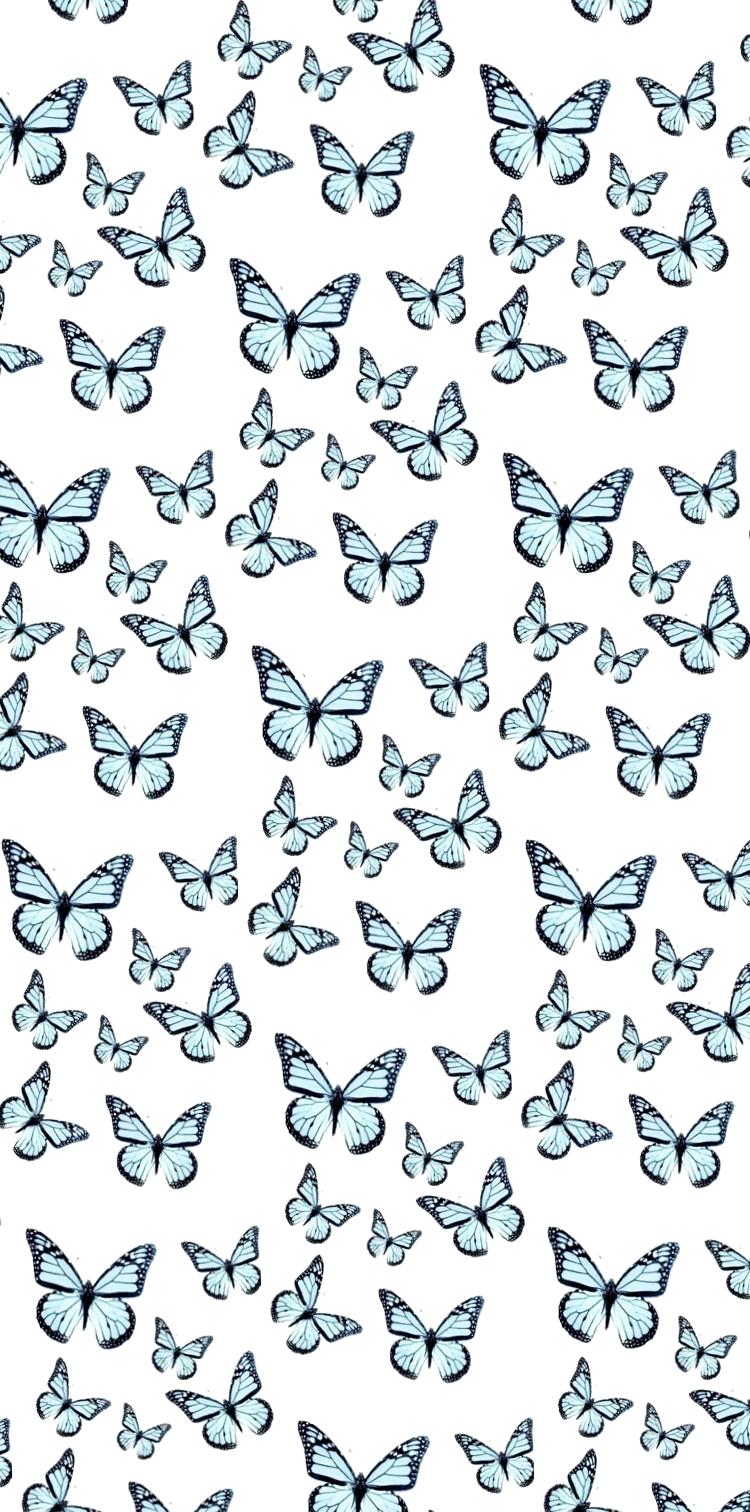 24 Juni 2020 Eine Riesige Auswahl An Kostenlose Ziemlich Telefon Tapeten Ihr Tel Butterfly Wallpaper Iphone Aesthetic Iphone Wallpaper Iphone Wallpaper Vsco