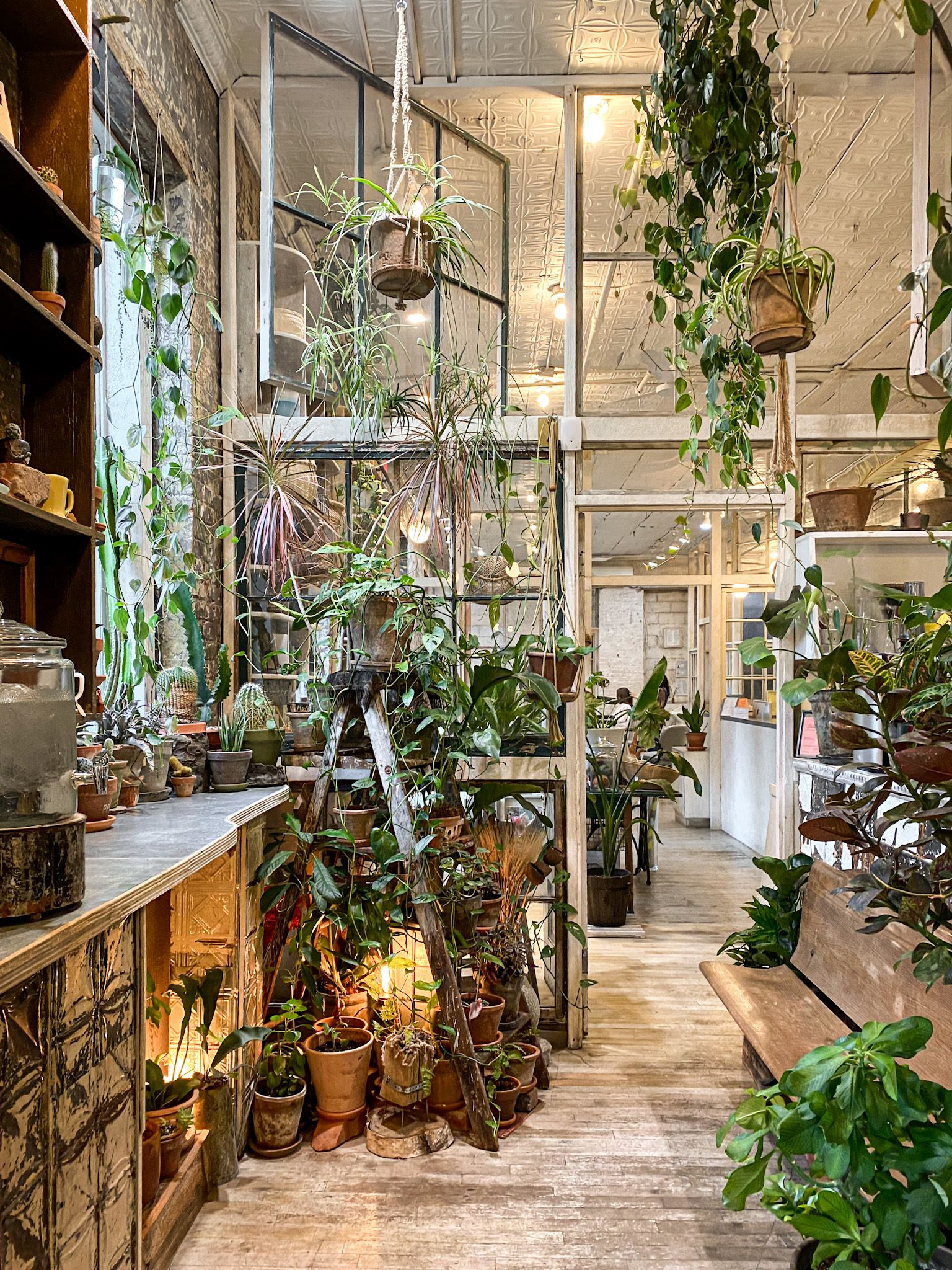 Favorite williamsburg shops in 2020 with images coffee