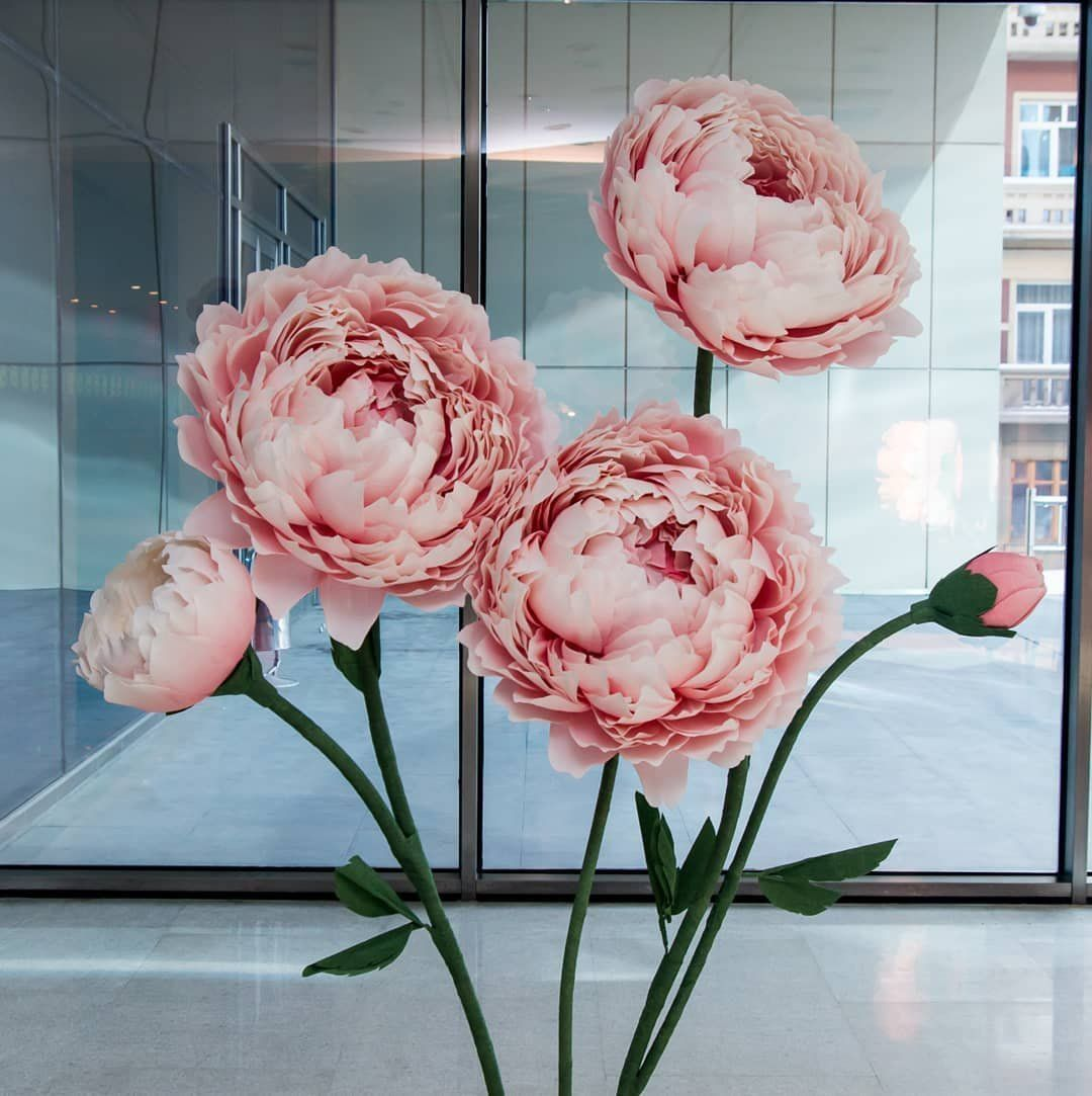 Giant Paper Flower With Stem Huge Paper Peony Photo Prop Free