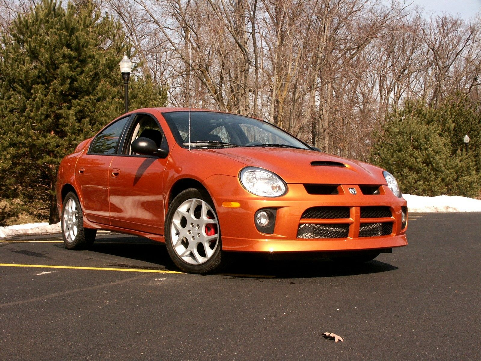 Orange Neon Affordable Sports Cars Manual Car Dodge